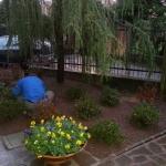 Aiuola presso giardino in Vimercate