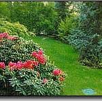 Giardino di Aicurzio